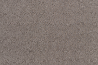 CAVALLI WAVE 1379-DM01