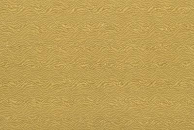 CAVALLI WAVE 1379-HY01
