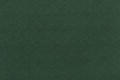CAVALLI WAVE 1379-KY02