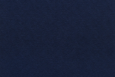 CAVALLI WAVE 1379-LY02